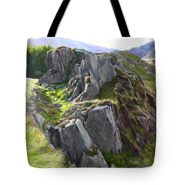 Outcrop In Snowdonia Tote Bag by Harry Robertson