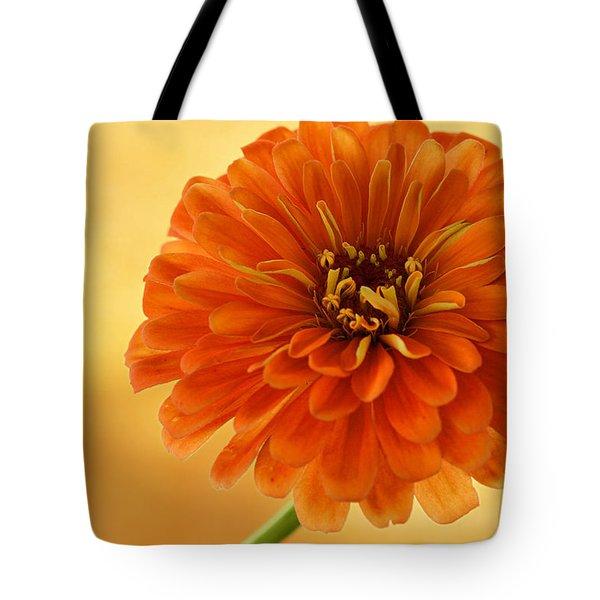 Outrageous Orange Tote Bag by Sandy Keeton