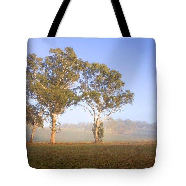 Paddock Sunrise Tote Bag by Mike  Dawson