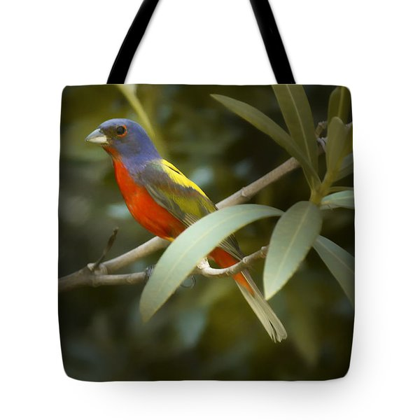 Painted Bunting Male Tote Bag by Phill Doherty