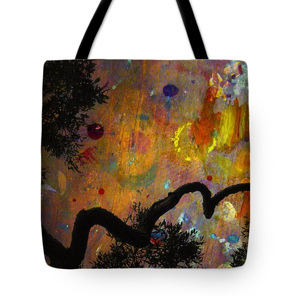 Painted Skies Tote Bag by Jan Amiss Photography