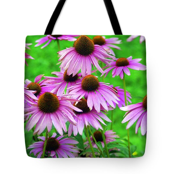 Pale Purple Coneflowers Tote Bag by Marty Koch