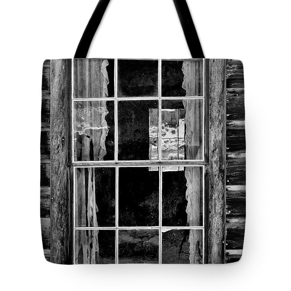 Panes To The Past Tote Bag by Sandra Bronstein
