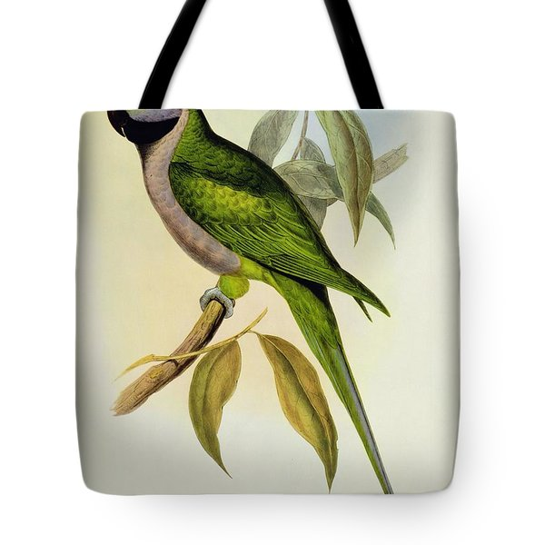 Parakeet Tote Bag by John Gould