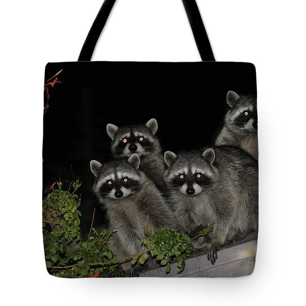 Party Of Five On The Roof Top Tote Bag by Nina Prommer