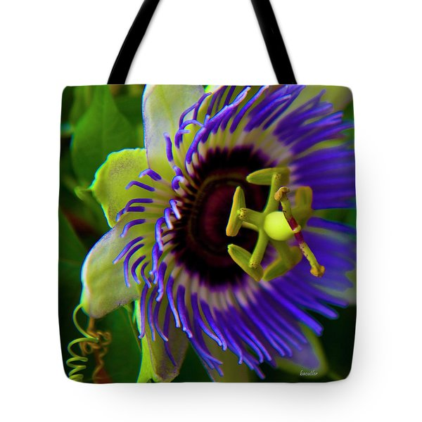 Passion-Fruit Flower Tote Bag by Betsy C  Knapp