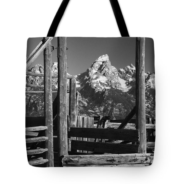 Past Its Time Tote Bag by Sandra Bronstein
