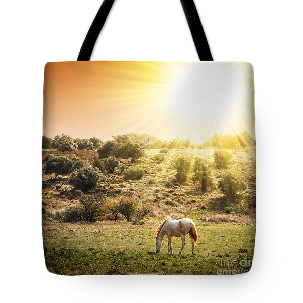 Pasturing Horse Tote Bag by Carlos Caetano