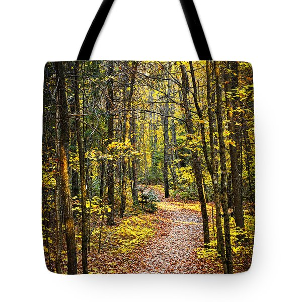 Path in fall forest Tote Bag by Elena Elisseeva