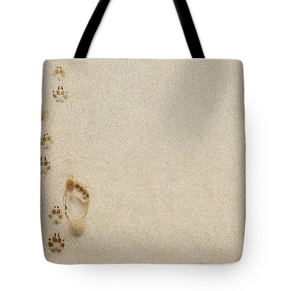 Paw And Footprint 1 Tote Bag by Brandon Tabiolo - Printscapes