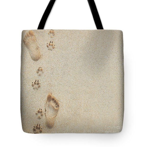 Paw and Footprints 2 Tote Bag by Brandon Tabiolo - Printscapes