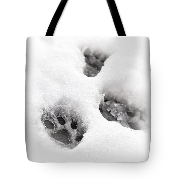 Paw print  Tote Bag by Tom Gowanlock