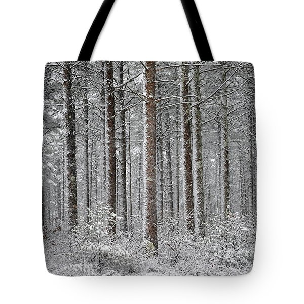 Peace in the Woods Tote Bag by Catherine Reusch  Daley