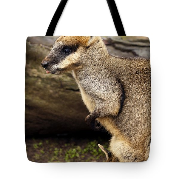 Peeking At The World Tote Bag by Mike  Dawson