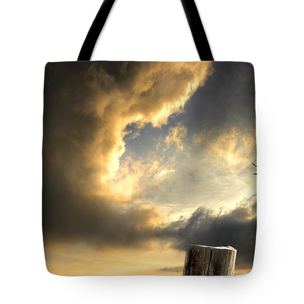 Pelican Evening Tote Bag by Meirion Matthias