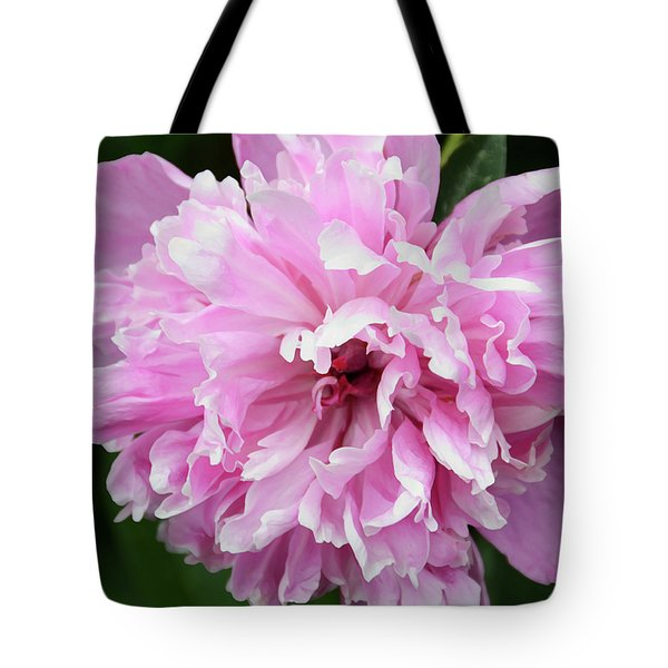Peony Perfection Tote Bag by Angelina Vick