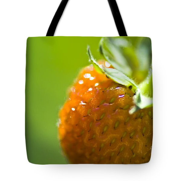 Perfect Fruit Of Summer Tote Bag by Heiko Koehrer-Wagner