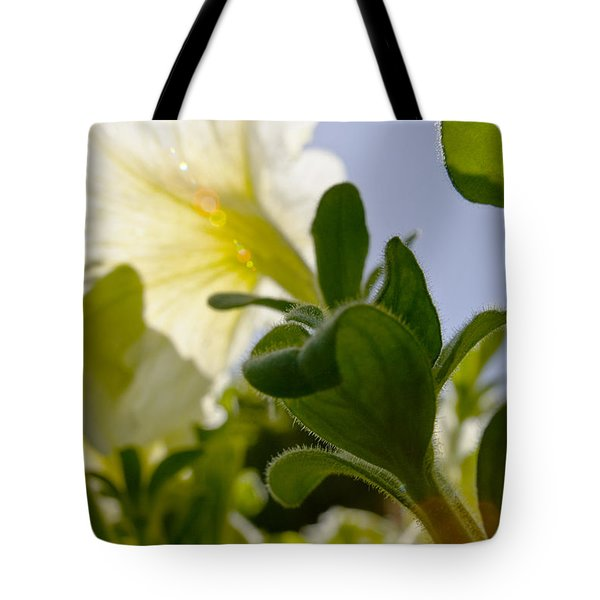 Petunia and Sunflare Tote Bag by Ray Laskowitz - Printscapes