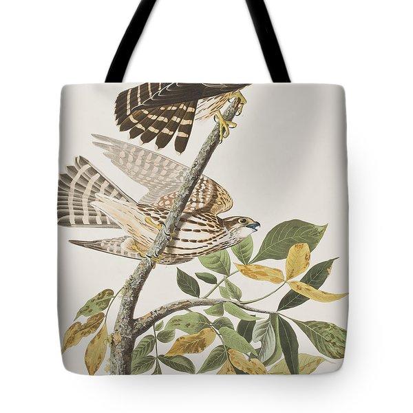 Pigeon Hawk Tote Bag by John James Audubon