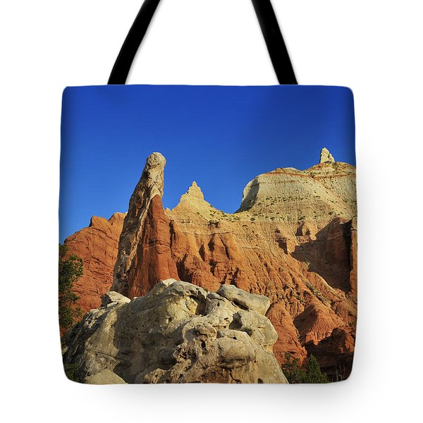 Pilgrim Tote Bag by Skip Hunt