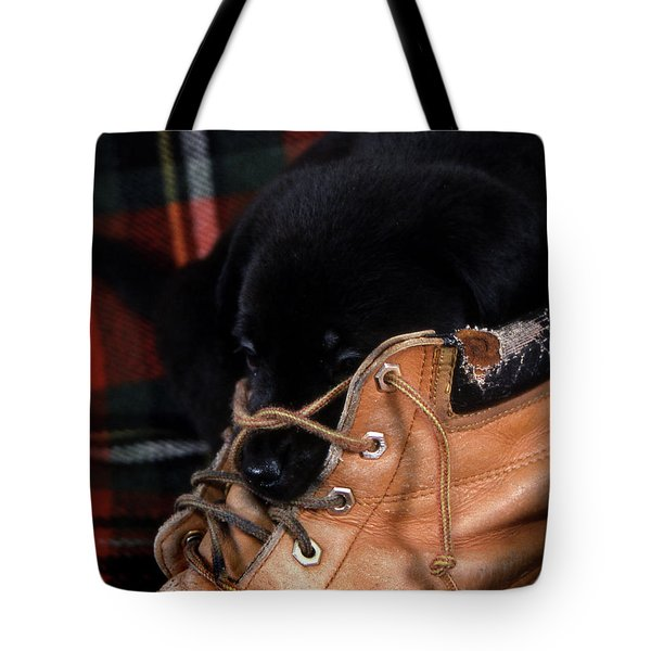 Pillow Tote Bag by Skip Willits