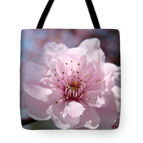Pink Blossom Nature Art Prints 34 Tree Blossoms Spring Nature Art Tote Bag by Baslee Troutman