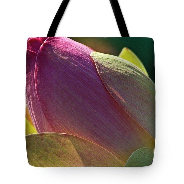 Pink Lotus Bud Tote Bag by Heiko Koehrer-Wagner