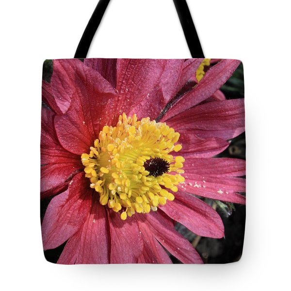 Pink Pasque Flower Tote Bag by Carol Groenen