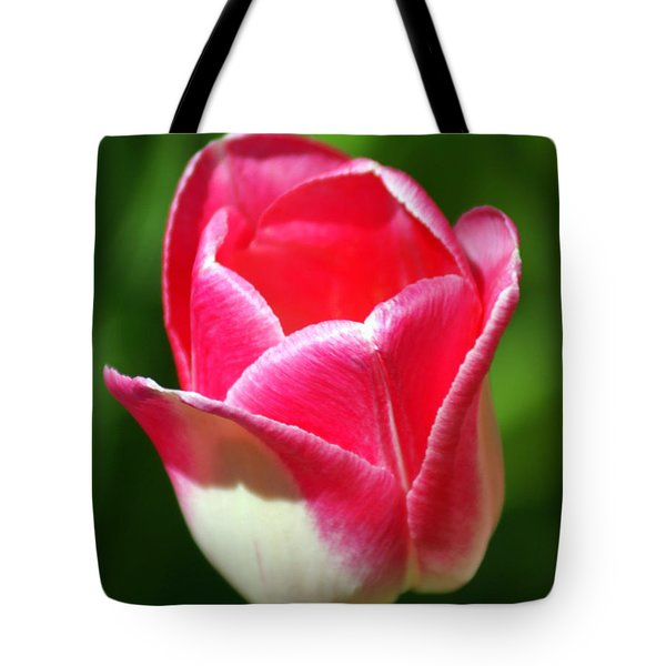 Pink Tulip Tote Bag by Marty Koch