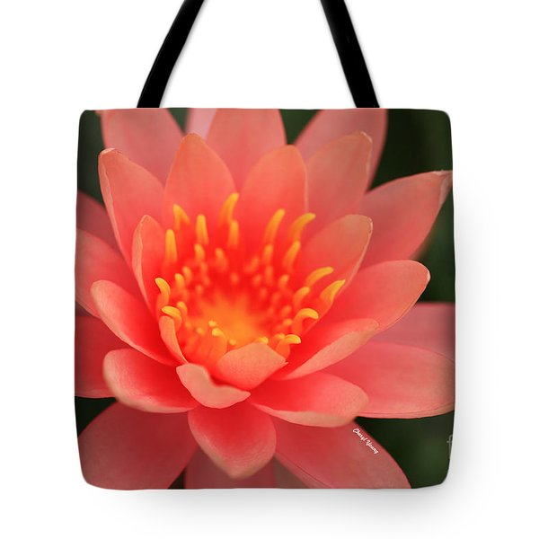 Pink Water Lily Tote Bag by Cheryl Young