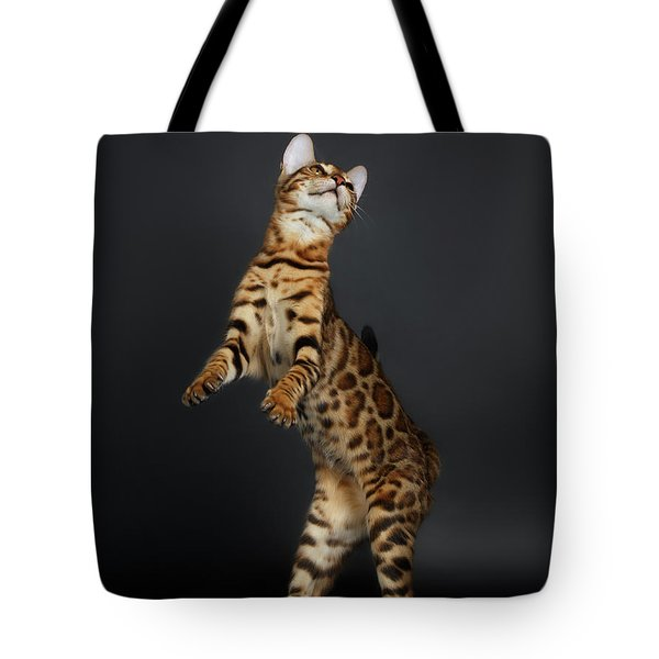 Playful Female Bengal Cat Stands On Rear Legs Tote Bag by Sergey Taran