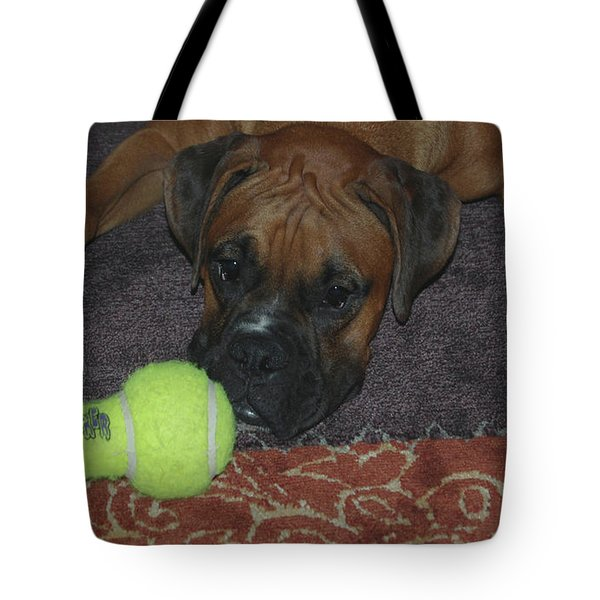 Please Play With Me Tote Bag by DigiArt Diaries by Vicky B Fuller