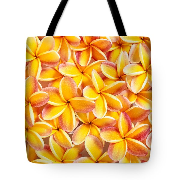 Plumeria Flowers Tote Bag by Kyle Rothenborg - Printscapes