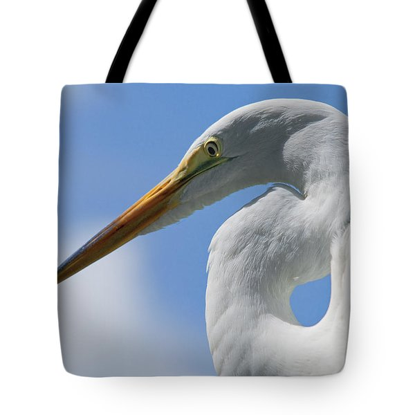 Pointed Curves Tote Bag by Christopher Holmes