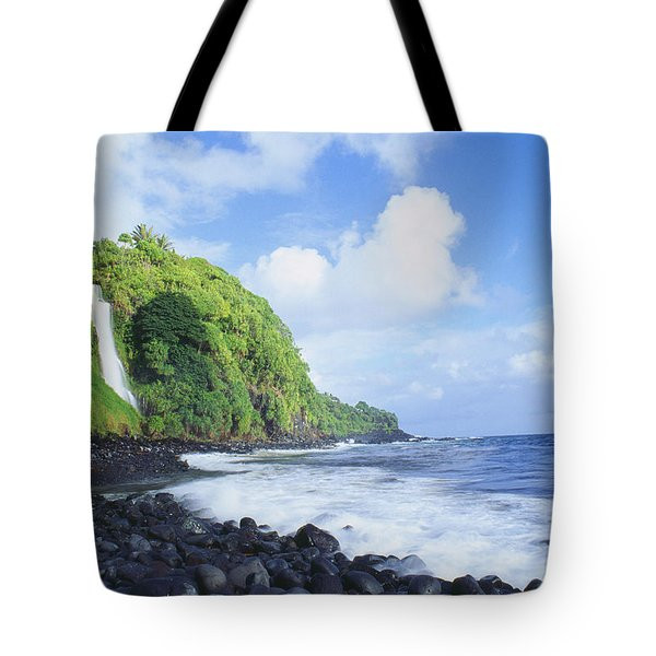 Pokupupu Point Tote Bag by Peter French - Printscapes