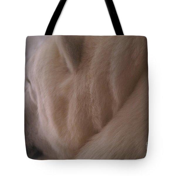 Polar Dream Tote Bag by Linda Shafer