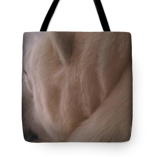 Polar Dream Tote Bag by Linda Knorr Shafer