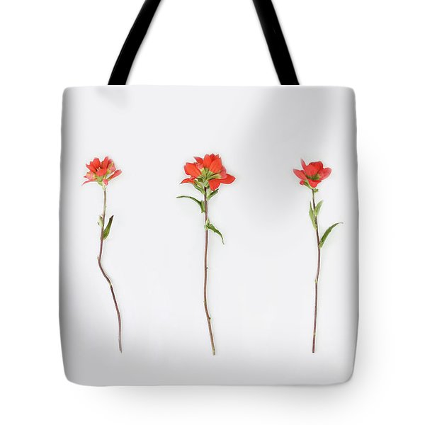 Poppy Blossoms Tote Bag by Brittany Bevis