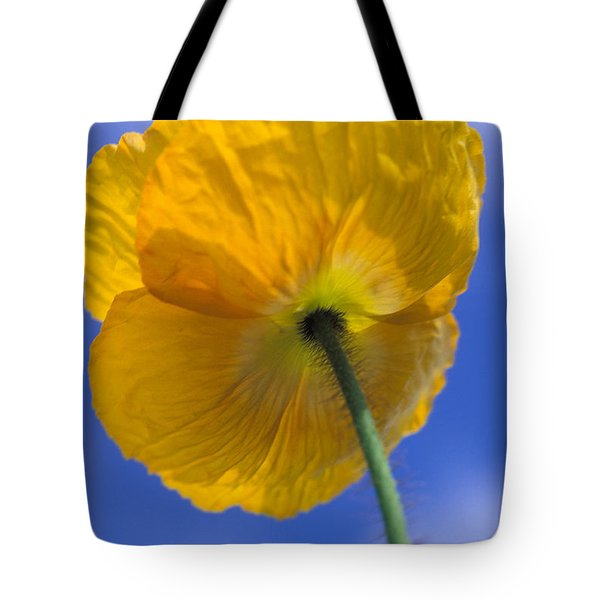 Poppy in the Sky Tote Bag by Kathy Yates