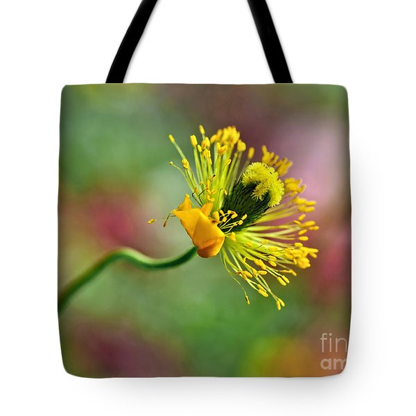 Poppy Seed Capsule Tote Bag by Kaye Menner