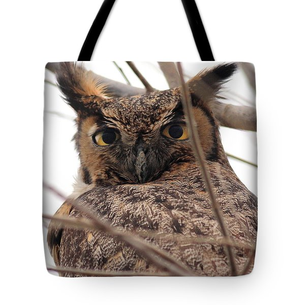Portrait of a Great Horned Owl Tote Bag by Wingsdomain Art and Photography