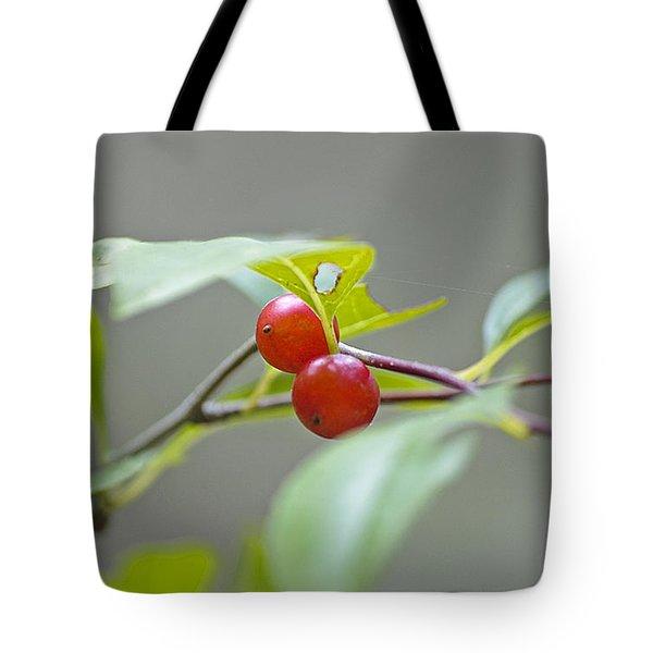 Possum Haw Berries Tote Bag by Kenneth Albin