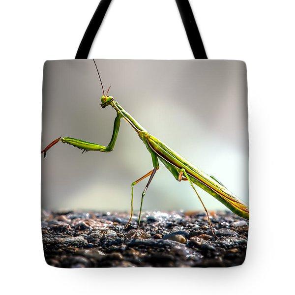 Praying Mantis Tote Bag by Bob Orsillo