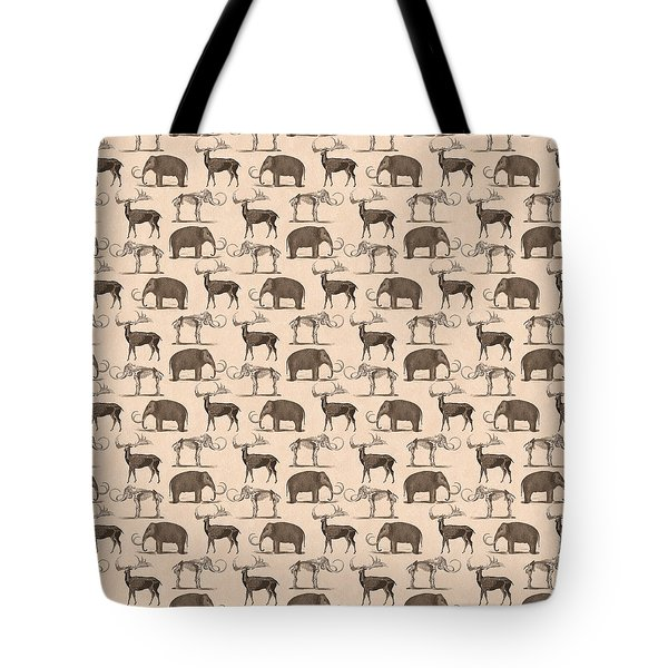Prehistoric Animals Tote Bag by Antique Images