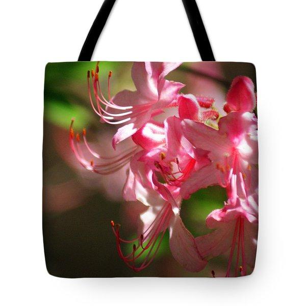 Pretty Pink Tote Bag by Marty Koch
