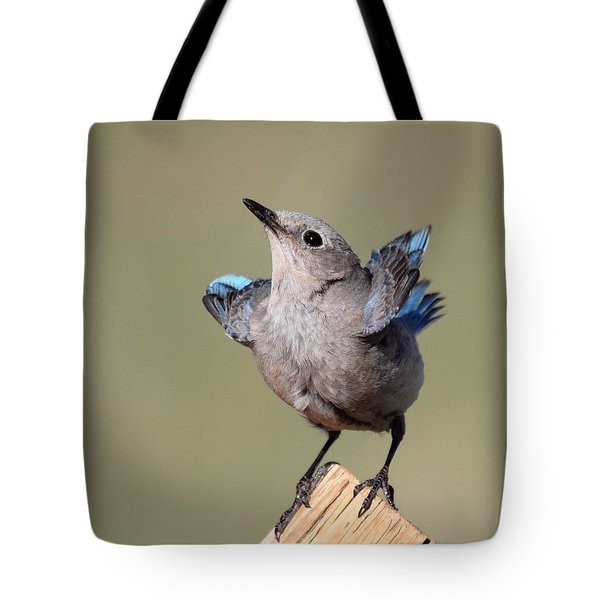 Pretty Pose Tote Bag by Shane Bechler