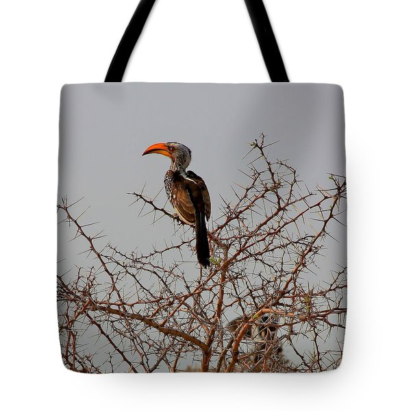 Prickly Perch Tote Bag by Stacie Gary