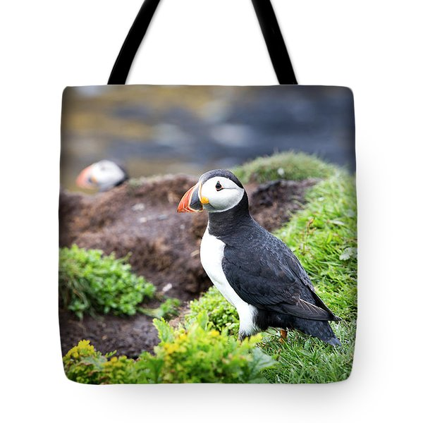 Puffin  Tote Bag by Jane Rix