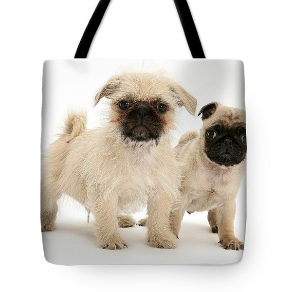 Pugzu And Pug Puppies Tote Bag by Jane Burton