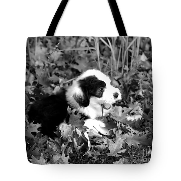 Puppy In The Leaves Tote Bag by Kathleen Struckle